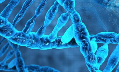 Cuba de Eletroforese- Utilizada em muitos processos de Biologia Molecular