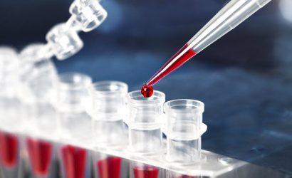 Laboratório de Genética – A Infraestrutura necessária para a montagem.