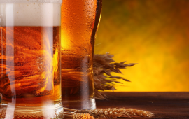 Densímetro  Utilizado para Medir a Densidade de Cerveja.