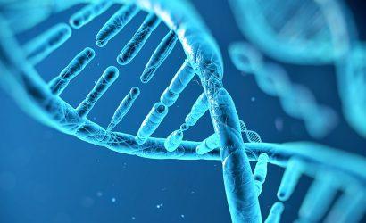 Termociclador de PCR em Tempo Real – Saiba suas Funções.