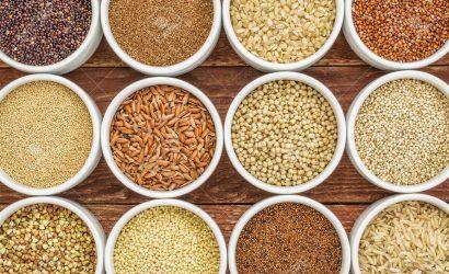 Microscópio – Equipamento importante para Investigação Alimentar