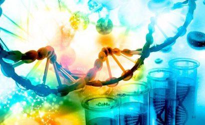 O que é PCR em tempo real? Qual sua importância para o diagnóstico de doenças?