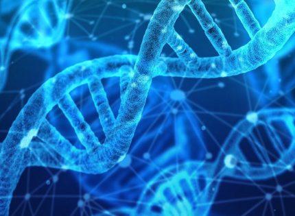 Equipamentos para PCR – Processo de Reação em Cadeia da Polimerase.